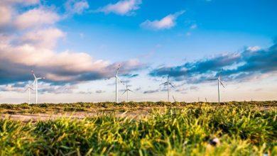 Foto de Andrew Charles Jenner – Como escolher uma empresa de gerenciamento de energia