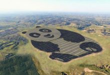 Foto de Astra Investimentos mostra porque esta fazenda de energia solar tem formato de Panda