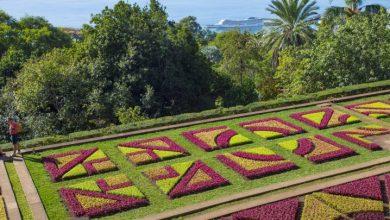 Foto de Para todas as idades: Ilha da Madeira conquista até visitantes seniores