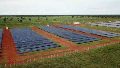 Foto de Mori Colocará Mais De 30 Usinas Solares Em Funcionamento No Estado Até O Final Do Ano