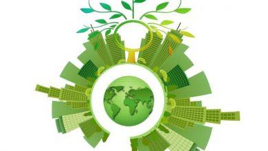 Foto de Agromarketing digital: como utilizar a Internet para divulgar os negócios do campo